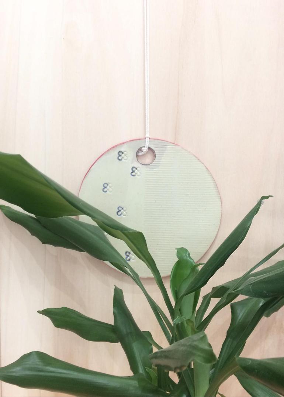 planche-fleur-deco-ceramique-rennes-bianina-florentine
